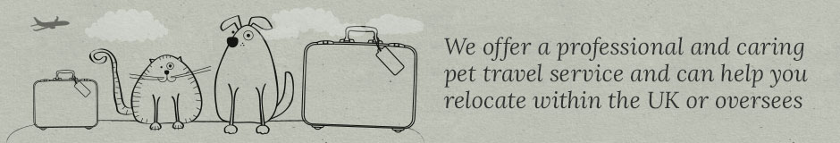 Pet Travel, Boarding and Care Services